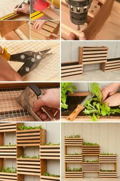 Build your own vertical garden