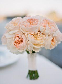 Peach garden roses. Floral Design by hollyflora.com,