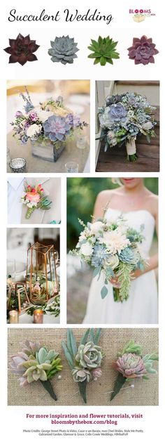 The succulent trend started with home decor, but quickly transitioned to the wedding scene in centerpieces, bouquets and so much more! Whether you're looking for an full on succulent statement or just want to use them as a subtle accent, there are plenty of ways to incorporate them into your big day! | Pinter Gemstones