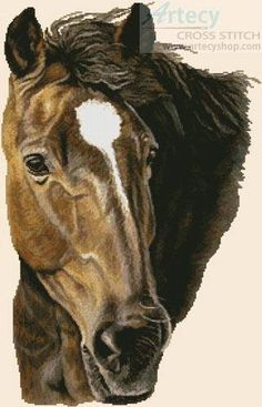 Bay Horse - cross stitch pattern designed by Tereena Clarke. Category: Horses.