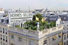 Le jardin de la maison Hermès à Paris