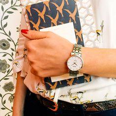 Seiko Watches, Daniel Wellington, Stuff To Do, Accessories, Jewelry, Women, Branding, Jewlery, Jewerly