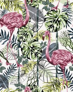 Overview Charlotte Jade specializes in detailed, hand drawn and bespoke patterns, which are mostly inspired from the beauty in nature; plants, foliage, flowers and animals. Her first wallpaper and cus