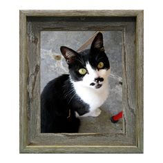 Appalachian Barnwood Picture Frame (16-inch X 20-inch)