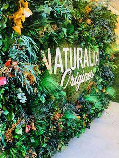 Wall Planters from Apollo Box Flower Wall Backdrop, Wall Backdrops, Plant Wall Diy, Vertical Garden Plants, Deco Restaurant, Art Mur, Boutique Deco, Hawaiian Theme, Green Garden