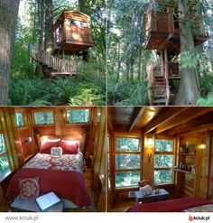 dom na drzewie pozwolenie - Szukaj w Google