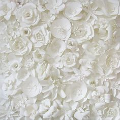 white paper flowers backdrop....wishful thinking