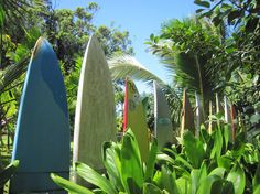 A fun way of recycling old surf boards. #maui #hawaii #surfing