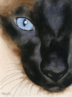 SIAMESE CAT Watercolor Signed Fine Art Print by Artist DJ Rogers  Have this...one of my favorites!