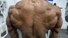 Killer Back Workout, Back Workout Men, Back And Shoulder Workout, Gym Workouts For Men, Cardio Workout Plan, Gym Workout Videos, Workout Humor, Back Workout Bodybuilding, Traps Workout