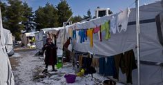 REFUGEES at a frozen camp in Greece are refusing to leave their tents for fear of being deported despite being offered emergency hotel accommodation to escape the cold. Due to worsening conditions at the Vagiohori settlement near Thessaloniki, 54 of the camp's inhabitants were offered 15-days of...