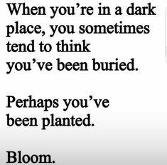 Bloom 🌱🌸 Old Soul, Dark Places, I Laughed, Bloom, Wisdom, Positivity, Inspiration, Paddles, Biblical Inspiration