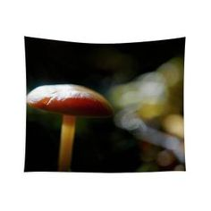 Fallen fungi Tapestry x by Helen Kelly. Our premium tapestries are available in three different sizes and feature incredible artwork on the top surface. Chris Cornell Thank You, Wall Tapestries, Tapestry, Forest Light, Traditional Frames, Wall Spaces, How To Be Outgoing, Fungi, Color Show