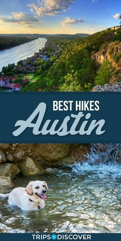 Austin, Texas isn't just known for its weird culture and amazing tacos. Escape the city life and explore Austin's parks, preserves and green areas through one of these 10 Best Hikes in Austin Texas Vacations, Texas Roadtrip, Texas Travel, Travel Usa, Family Vacations, Beach Travel, Family Travel, Hiking Places, Places To Travel