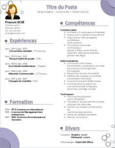 23 Meilleures Images Du Tableau Cv Sample Resume Organization Et