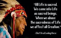 All life is sacred. We come into life as sacred beings. When we abuse the sacredness of life we affect all Creation. - Chief Arvol Looking Horse Native American Wisdom, Native American Beauty, Native American Artists, Native American Indians, Native Indian, Wise Proverbs, Native Quotes, World Peace, Spirit Guides
