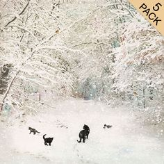 Cat Family Five Pack - Bug Art greeting card Cat Christmas Cards, Christmas Scenes, Bug Art, Decoupage, Photo Images, Spirited Art, Winter Scenery, Winter Art, Winter Snow
