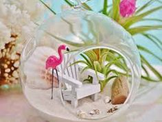 Image result for flamingo terrarium