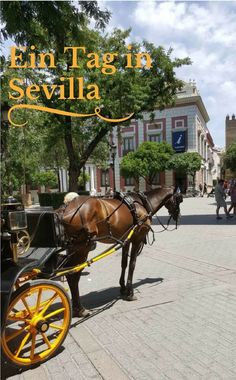 Mein Blogbeitrag zu einem Tag in Sevilla mit Tipps und Inspirationen. / My blog entry about a day in Sevilla with tips and inspirations.