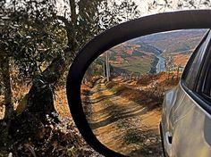 #ilovedouro#retrovisor#carro#nissanjuke#douroriver#olhardeamador#douro#dourovalley#dourolovers#beautiful#landscape#paisagem#natureza#oliveira#instantes_fotograficos#portugaldenorteasul#portugalemperspectiva#igersportugal#caminhodeterrabatida#vinhas#terra#nature by evitalopes