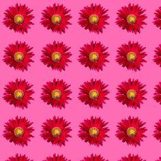 Patterns, Plants, Block Prints, Plant, Pattern, Planets, Models, Templates
