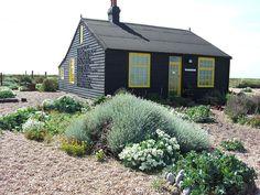 crambe maritima sea kale front right corner - edible flowers Derek_Jarman's_garden