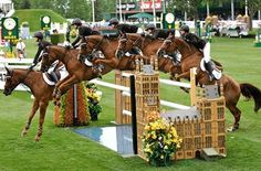 Reed - truly and inspiration to every equestrian