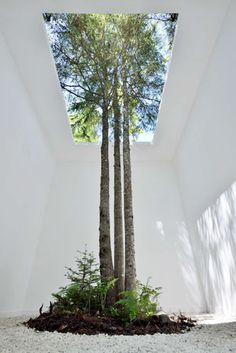 Indoor and outdoor intwined: Anouk Vogel Landscape Architecture