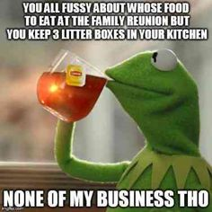 You've probably stumbled across memes of Kermit the frog sipping tea, unsure of its actual meaning. But when you're someone who really loves to gossip and needs the perfect image to sum it up, the Kermit tea meme is perfect for you. Keto, Citations Facebook, Jesus Meme, Jesus Funny, Tea Meme, Business Meme, Minecraft, Vybz Kartel, Perfect Golf
