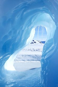 Antarctica peephole....   - Explore the World with Travel Nerd Nici, one Country at a Time. http://TravelNerdNici.com