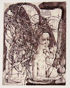 Grafica -- dsc_1970.jpg