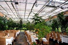 When you enter our greenhouse restaurant it feels like you just went 3000 km south. You are welcomed by strawberry- and tomato plants, fruit trees and edible flowers. One specialty, apart from the decor, is a surprising combination of fresh flavors. An excellent excursion for groups, families and others.