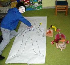 Εσωτερικά όργανα ανθρώπου Human Body, Bodies, Projects To Try, Creations, Kids Rugs, Ideas, First Aid Kid, Classroom, Lyrics
