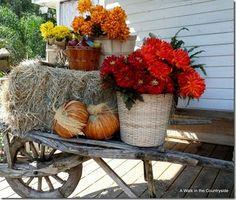 25+ Outdoor Fall Decor Ideas