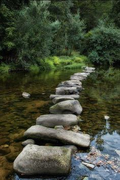 """From ~Old Moss Woman's Secret Garden~  """"One should never fear sorrow  because it is the stepping stone to happiness, """"   ~ Rig Veda"""