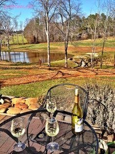 #wine tasting at daveste vineyards in NC