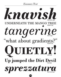 TYPEFACE DESIGN MERITS: Essonnes Typeface—JTD, Lancaster, PA; www.jtdtype.com: James Todd (art director, designer, illustrator, photographer, copywriters, printer), JTD (type foundry)