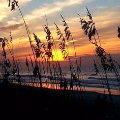Relax | Unwind | Make Special Memories | Myrtle Beach | South Carolina | Photo via Instagram by @georgiekoss |