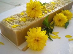 Container, Soap, Bar Soap, Soaps