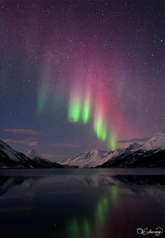 Excited to Ground State, photo by Ole C Salomonsen for The Royal Observatory, UK. The aurora borealis over mountains in Ulsfjord, Norway Beautiful Sky, Beautiful World, Beautiful Pictures, See The Northern Lights, Tromso, To Infinity And Beyond, Light Photography, Belle Photo, Night Skies