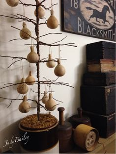 love the gourd tree..
