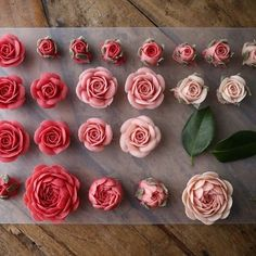 Whitebeanpaste flower _ #maisonolivia #ricecake #whitebeanpast #whitebeanpasteflower #koreaflowercake #korearicecake #flowercake #플라워케이크 #플라워케익 #대구플라워케이크 #메종올리비아 #앙금플라워떡케이크 #앙금플라워케익 #앙금플라워케이크