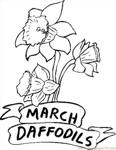 flower Page Printable Coloring Sheets | ... printable coloring page 03 March Daffodils (Natural World > Flowers