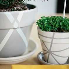 Make+a+gorgeous+(and+budget+friendly)+tablescape+with+these+DIY+geometric+painted+flower+pots!  Martha Stewart Craft Paint