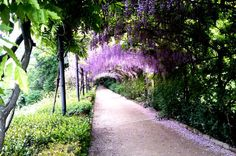 Gardens of Florence Private Tour  Choose this private tour to have a walkbetween the green and relaxing Boboliand Villa Bardini gardens with a professional tour guide.Florence isa city of museums and sculptures, but you also find a green heart that no one expects. On the left bank of river Arno green hills stretch since long time and still preserve the charm of peaceful places. One is for sure Boboli Garden, that Cosimo Iof theMedici family wanted to surround the beautifu...