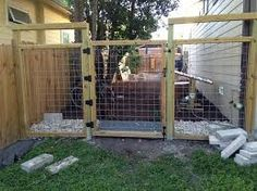 image result for welded wire fence dogs