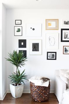 Megan Koranda's Chicago Home Tour #theeverygirl - their gallery is a fantastic mix of black, white, gold, thick and thin frames