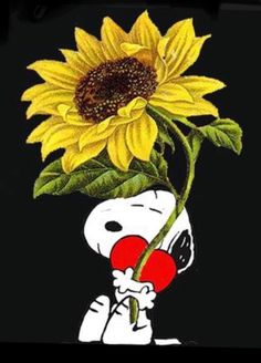 Snoopy Hug, Snoopy And Woodstock, Snoopy Land, Snoopy Images, Snoopy Pictures, Peanuts Cartoon, Peanuts Gang, Snoopy Videos, Good Morning Snoopy