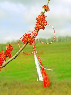 Romanian Martisor Baba Marta, 8 Martie, Poems, March, School, Spring, Pictures, Beautiful, Gentleness