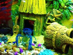 Data Sheet     Scientific Name:  Procambarus alleni  Other Names:  Blue crayfish, Blue Florida Crayfish, Electric Blue Crayfish, Everglades...